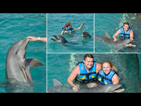 EPIC EXPERIENCE SWIMMING WITH DOLPHINS IN MEXICO - DOLPHIN DISCOVERY/VIRGIN AHOY 2017