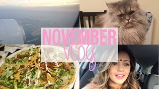 VLOG | November 2014 | Kaushal Beauty Thumbnail