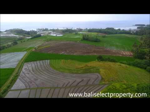 Freehold Bali Land For Sale Under Market Value With Ocean Views