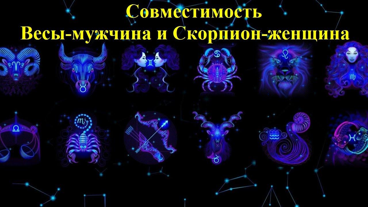 Какие знаки зодиака подходят если девушка скорпион