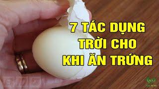 Đây Là Lý Do Bạn Sẽ Ăn 1 Quả Trứng Mỗi Ngày, Còn Tốt Hơn Nhân Sâm Hàn Quốc Đấy