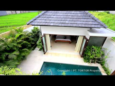 Bali villa for sale Canggu affordable new modern house pool paddy views