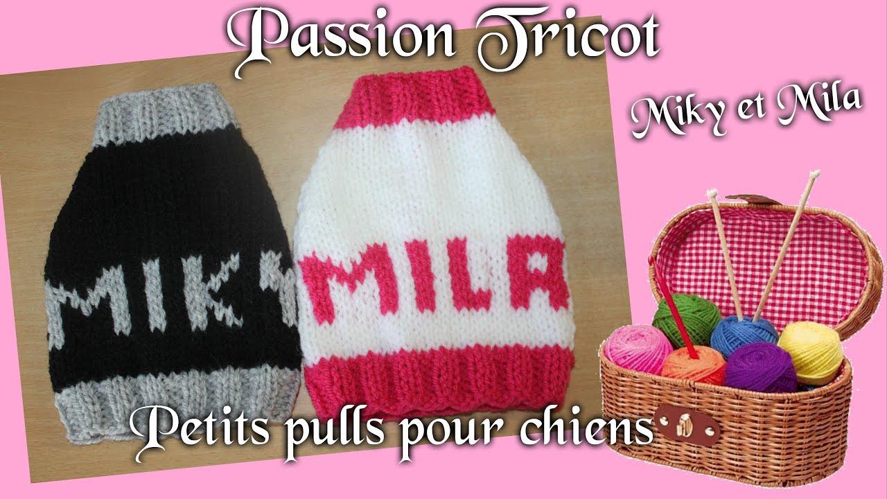 passion tricot petits pulls pour chiens de petites tailles youtube. Black Bedroom Furniture Sets. Home Design Ideas