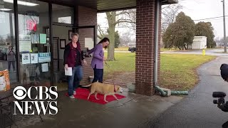 12-year-old-dog-takes-freedom-walk-out-of-shelter-after-being-adopted