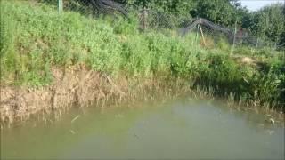 Özel Bir Havuzda Yayın Avı Denemeleri ( Sürpriz Trofe Balık )