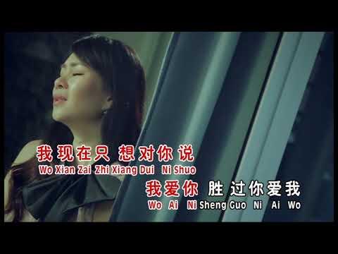 我爱你胜过你爱我(MV)黄晓凤 vs 侯俊辉