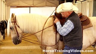 How To Adjust Draw Reins On Your Horse