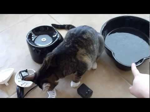 Pioneer Big Max Ceramic Pet Fountain