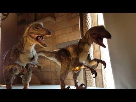 DINOSAURIOS Edmontosaurus MUSEO DE LONDRES