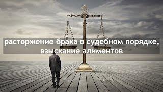 Расторжение брака в судебном порядке, взыскание алиментов