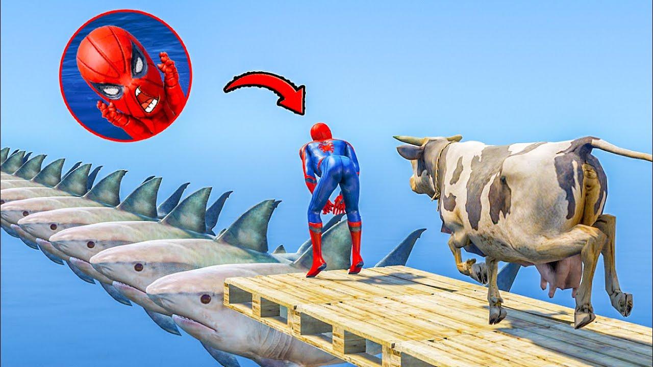 GTA 5 CRAZY Ragdolls Red Spiderman Jumps/Fails Shark Bridge (Euphoria Physics Funny Moments)