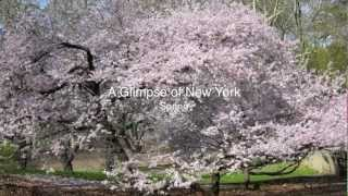 Gambar cover A Glimpse of New York - Spring