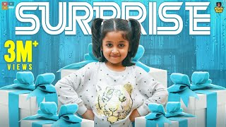 Rowdy Baby's Surprise || Chutti Kuzhandhai || The Mix Tamil