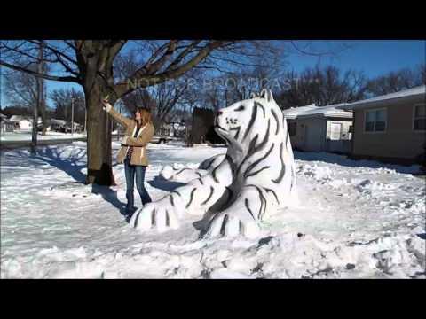 1-10-16 Sumner, Iowa; Snow Tiger