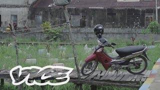 Sensus: Jajak Pendapat Anak Muda Indonesia