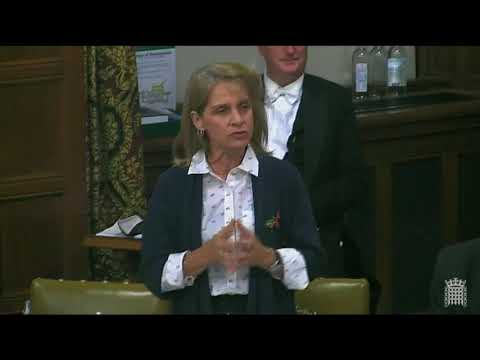 Wera Hobhouse explains coalitions to Conservative MP