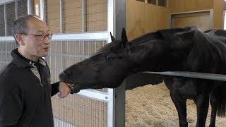 【宝塚記念】シャケトラ・角居勝彦調教師 素質馬がグランプリで開花する