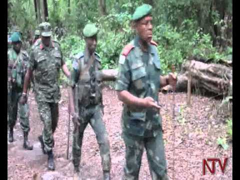 ADF rebels battle congolese army, kill civilians.