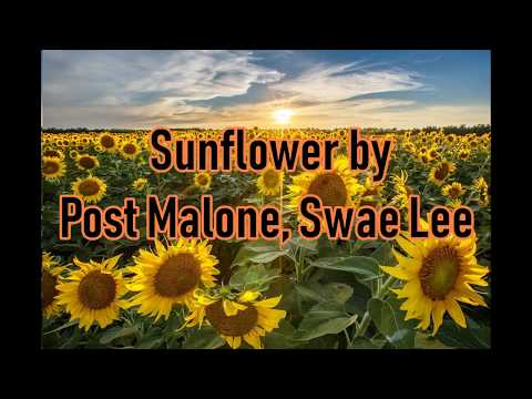 歌詞 和訳 Post Malone Swae Lee - Sunflower