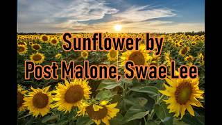歌詞 和訳 Post Malone, Swae Lee - Sunflower