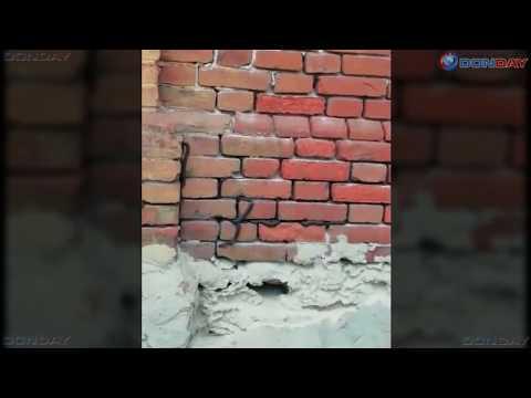 Гадюки заселили объект РЖД на станции Мишкинской, Ростовская область