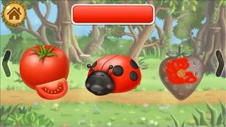 Fun for kids:Learning Colors for Kids: Toddler Educational Game
