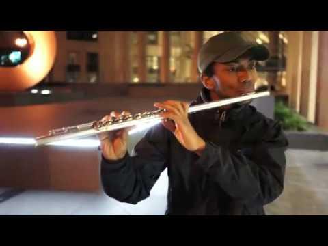 Beethoven 5 Flute Beatbox Jam
