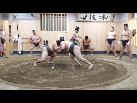 A day in the lives of sumo wrestlers