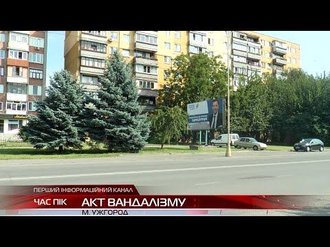 В Ужгороді невідомі розмалювали передвиборчі білборди