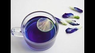 Чай Чанг шу Цена, Реальные | Пурпурный Чай для Похудения Чанг шу