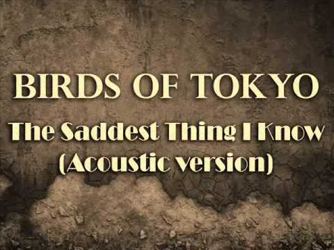Birds Of Tokyo - The Saddest Thing I Know