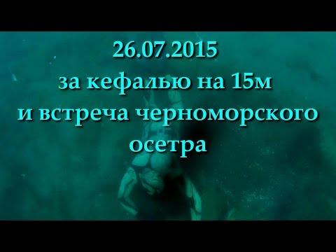юбк подводная охота