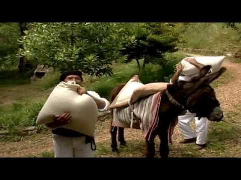 Rancho Folclórico do Grupo Alegre e Unido Bajouca-Leiria - Margarida Moleira