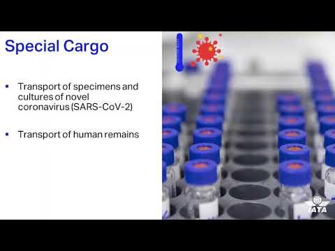 Cargo webinar - Part 1 - D. Brennan