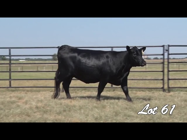 Pollard Farms Lot 61