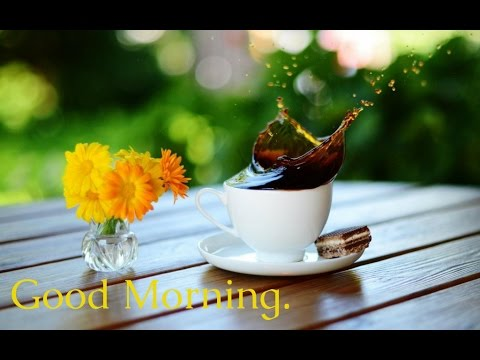 Beautiful Good Morning Wishes, Greetings   Cute Quotes Animation WhatsApp  Video#3