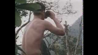 BROTHER IN ARMS vietnam war music video