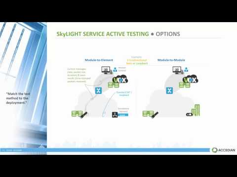 Virtualized Performance Management for Next Gen Networks: Webinar Replay Final Version