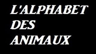 Alphabet des animaux ( pour les enfants )