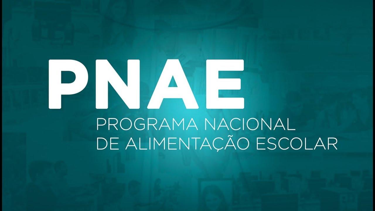 PNAE (Programa Nacional de Alimentação Escolar)