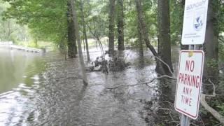 Hurricane Irene hits Great Swamp National Wildlife Refuge