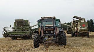 Żniwa 2015 w Gospodarstwie Rolnym Mokrzyn