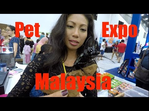 Reptile Reality-Pet Expo Malaysia