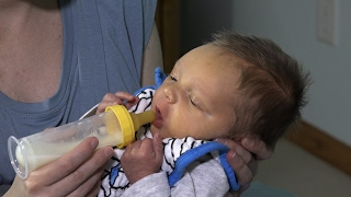 Paced Bottle Feeding by The Milk Mob thumbnail