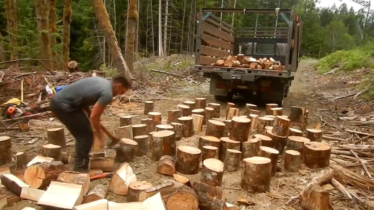 Ambitious Man Quickly Splits Logs Using Two Axes