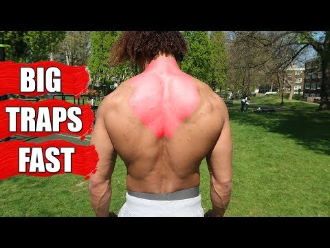 GET BIG TRAPS FAST USING JUST YOUR BODYWEIGHT - FOLLOW ALONG CALISTHENICS WORKOUT