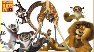 여러분들이 본 동물들은 어떤게 있어요? 신기한 동물친구들 만난 이야기