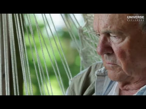THC Is Officially Acknowledged To Prevent Alzheimers | Universe Explorers