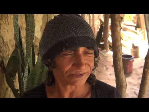 Docudrama - A Viúva Negra
