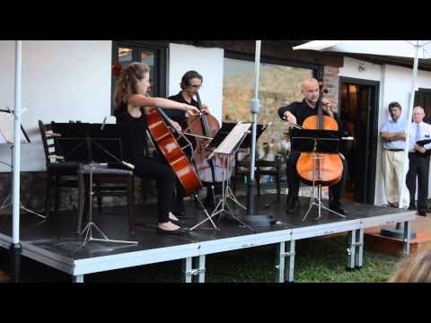 """Concierto, """"Música para Conjunto de Violonchelos""""   Casina Oliva Villaviciosa video 1"""